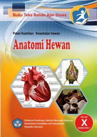 Anatomi Hewan 1 Kelas 10 SMK
