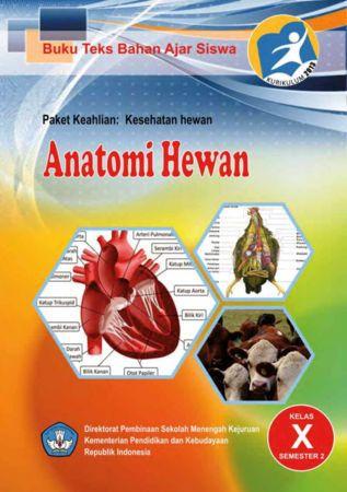 Anatomi Hewan 2 Kelas 10 SMK